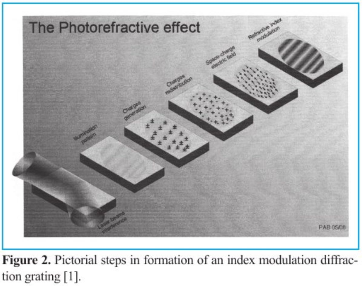 Photoreflexive Polymer Devices