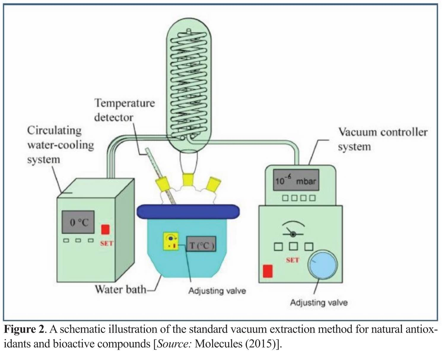 Industrial-Scale Vacuum-Powered Extraction Technologies for Bioactive/Antioxidant Products Boosting Food and Healthcare Sectors